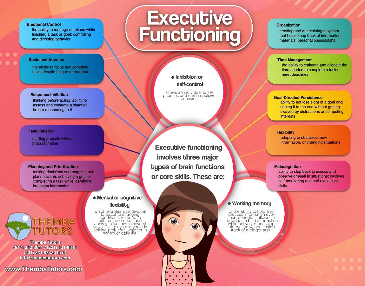 executive functioning skills, Themba Tutors