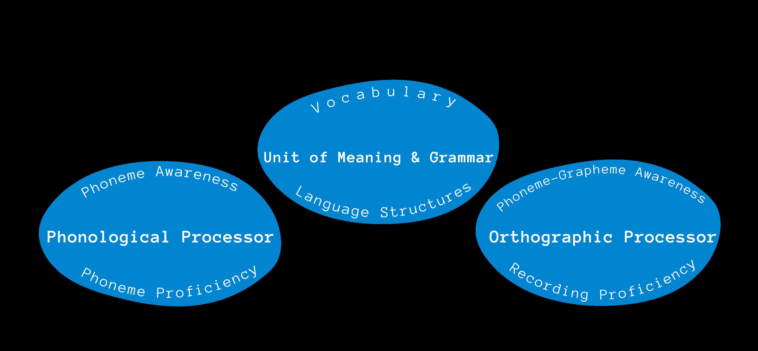 Reading Tutors,Comprehension Decoding Fluency, Themba Tutors