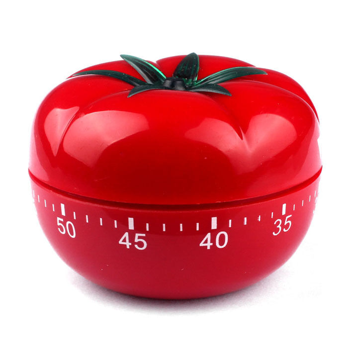 What is the Pomodoro Technique Timer?