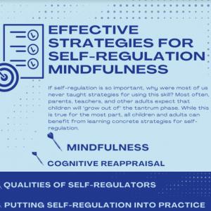 Effective Strategies for Self-Regulation Mindfulness, Themba Tutors